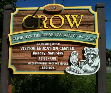 Rehabilitation fo Wildlife - CROW, Sanibel